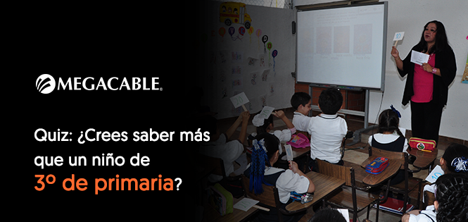Quiz: Back to school: ¿Crees saber más que un niño de 3º de primaria?